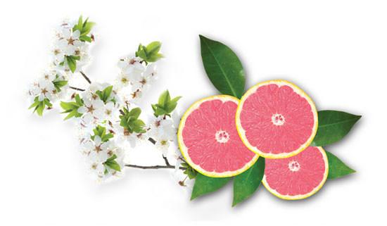 Nashi Blossom & Pink Grapefruit