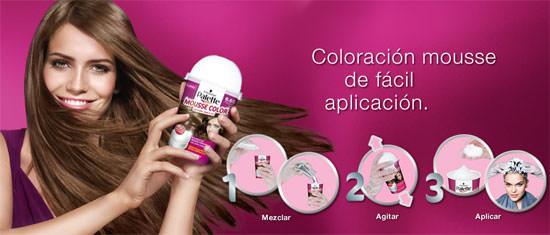 aplicar Palette Mousse Color