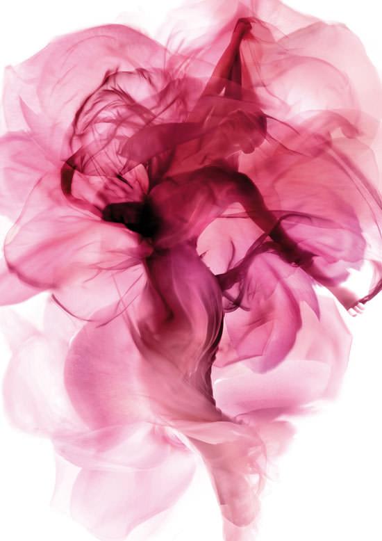 vestido Rose Imaginaire