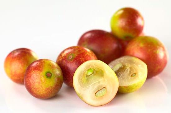 fruta camu camu
