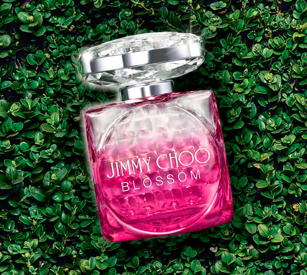 Blossom Jimmy Choo