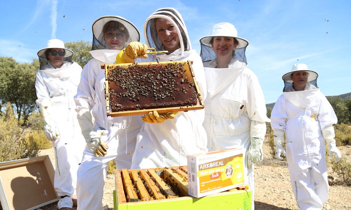 apicultoras-blogueras